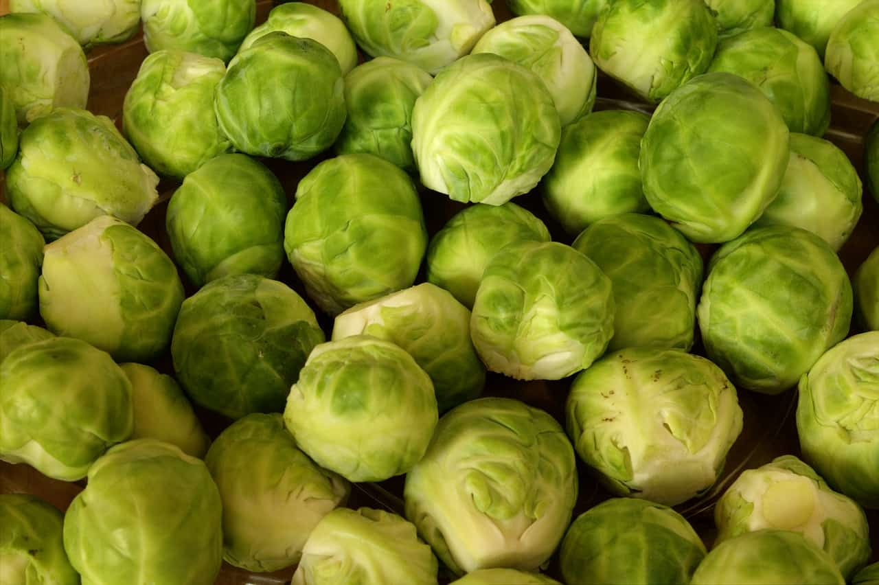 Can You Freeze Brussels Sprouts